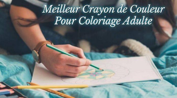 Meilleur Crayon de Couleur Pour Coloriage Adulte